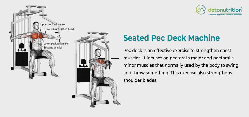 Seated Pec Deck Machine