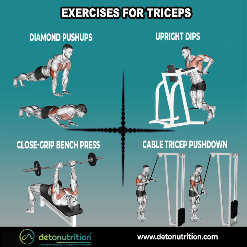Best Exercises to grow Arms and Triceps