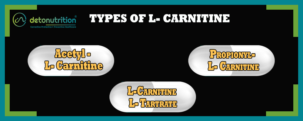 Types of L-Carnitine